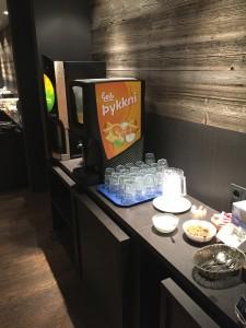 Hotel in Reykjavik