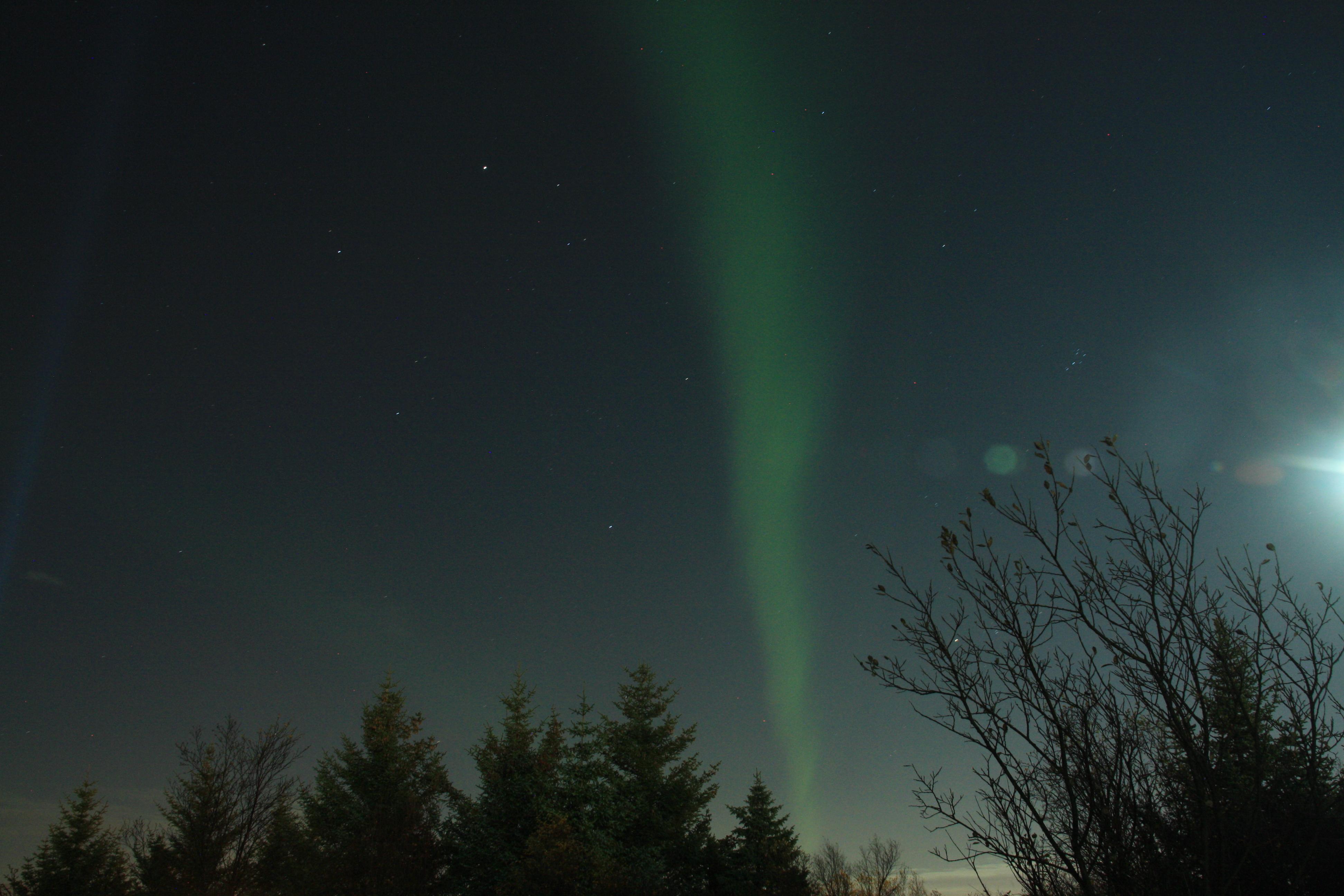 Nordlicht Jagd in Reykjavik - ein kurzes Feuerwerk zum Schluss