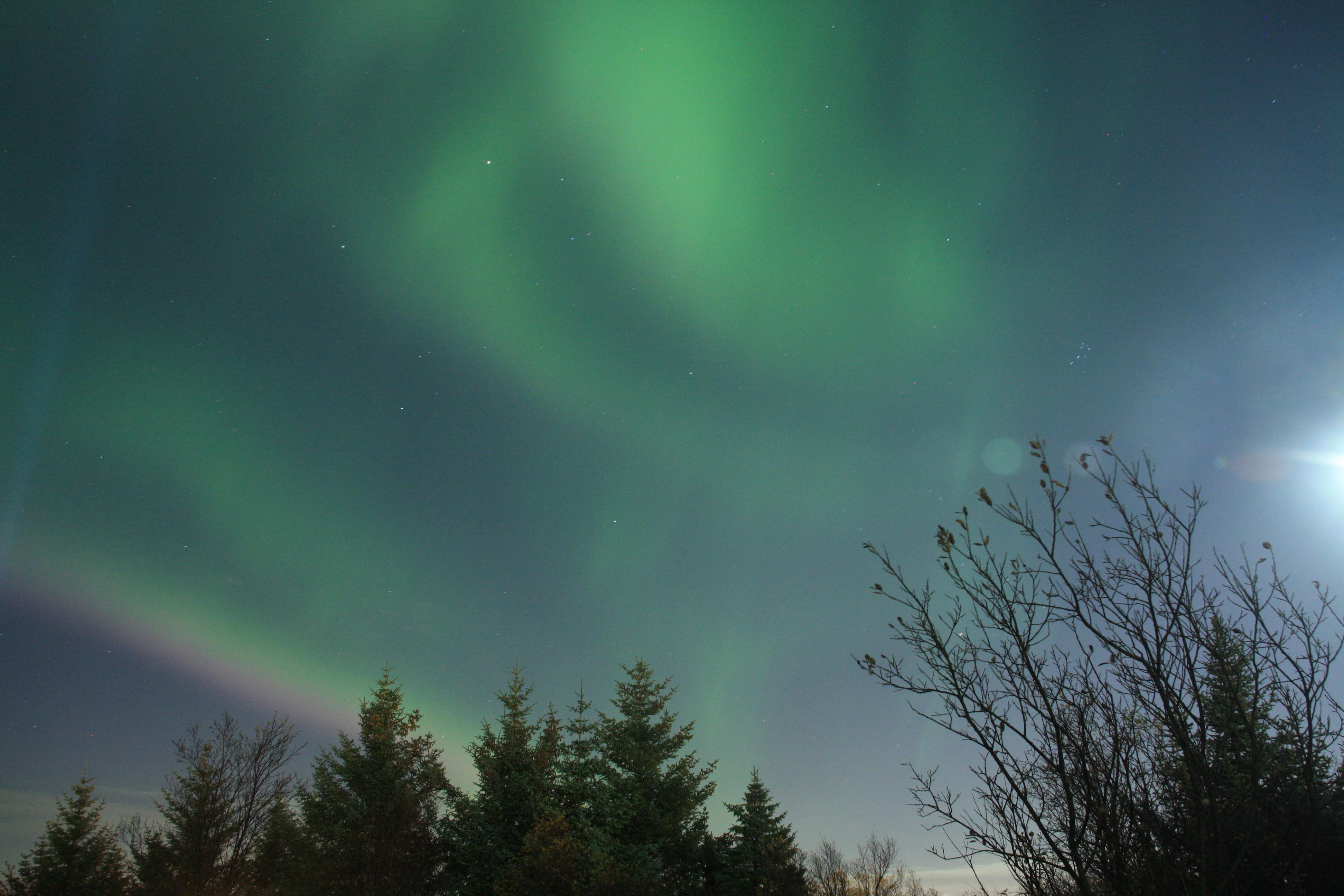 Nordlicht Jagd in Reykjavik - herrliches Grün und Lila