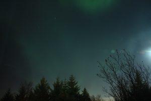 Nordlicht Jagd in Reykjavik - Sturm