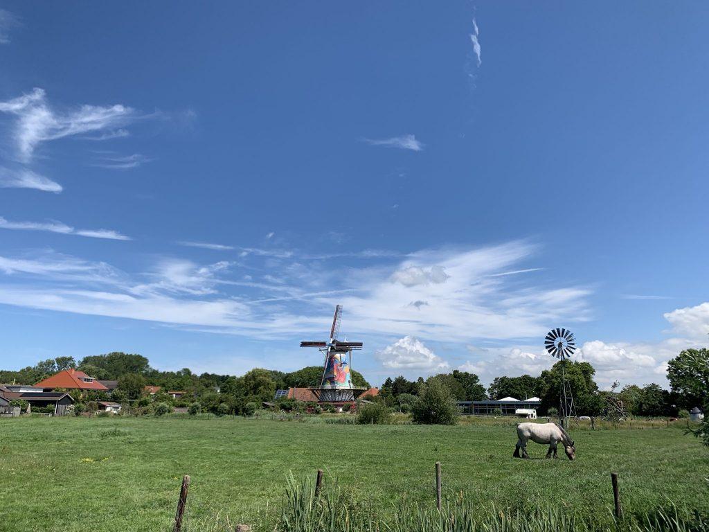 Pfannkuchenmühle