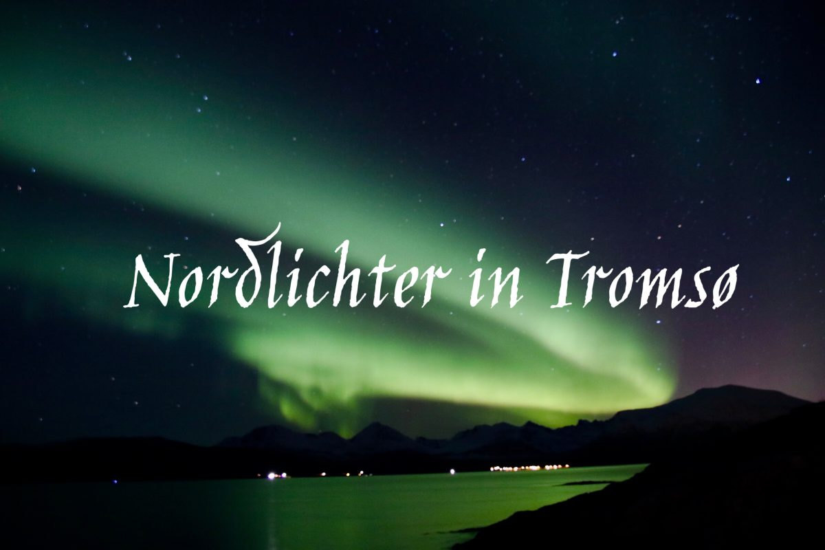 Nordlicht Tour in Tromsö