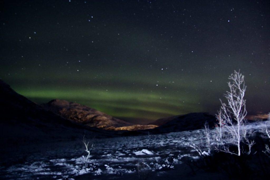 Nordlicht Tour in Tromsö