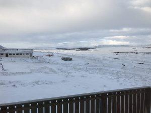 Sheep & Horse Farm Kopareykir - Ausblick von der Veranda
