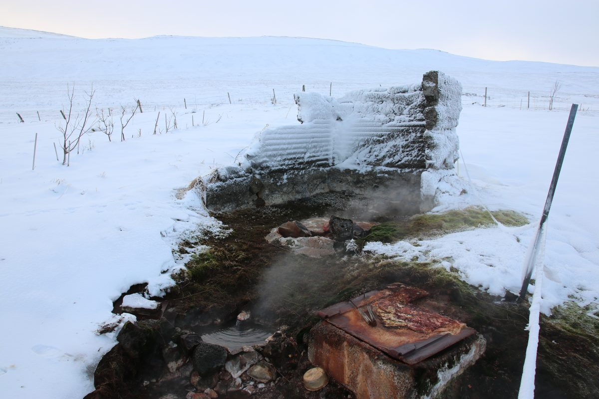 Sheep & Horse Farm Kopareykir - Die heiße Quelle