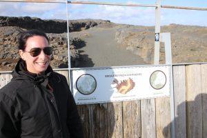 6 Tage Ísland Roadtrip - Von Snæfellsnes über Reykjavík bis Reykjanes