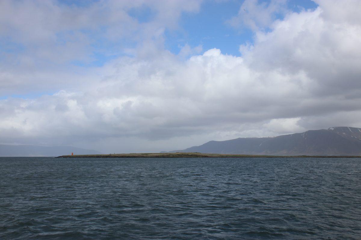 Die vorgelagerten Inseln Puffin Beobachtungstour