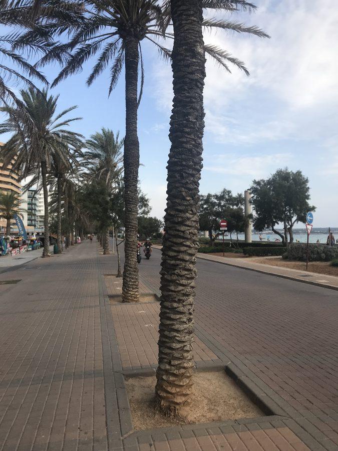 Lohnen sich 2 Tage Mallorca? Ein Ultrakurztrip