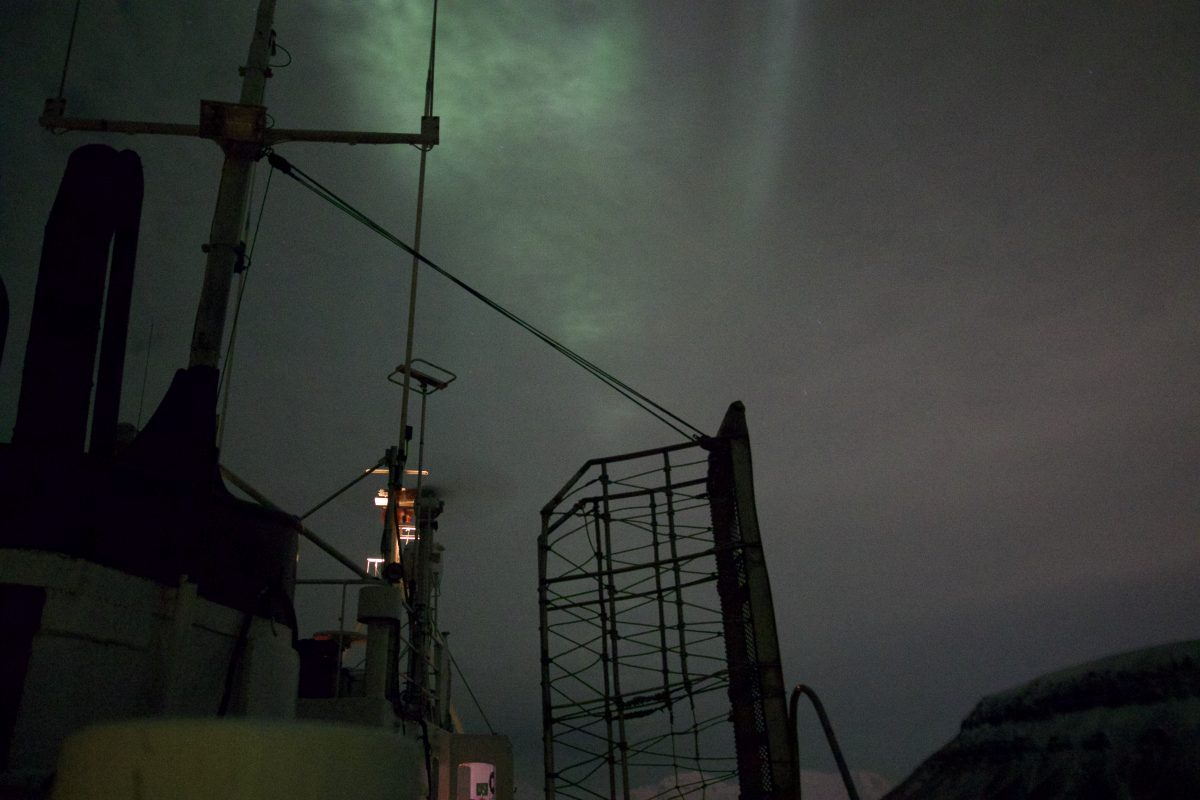 Northern Lights Polar Night Fjordcruise