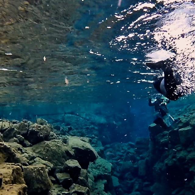 Schnorcheln in der Silfra Spalte Highlight Touren in Island