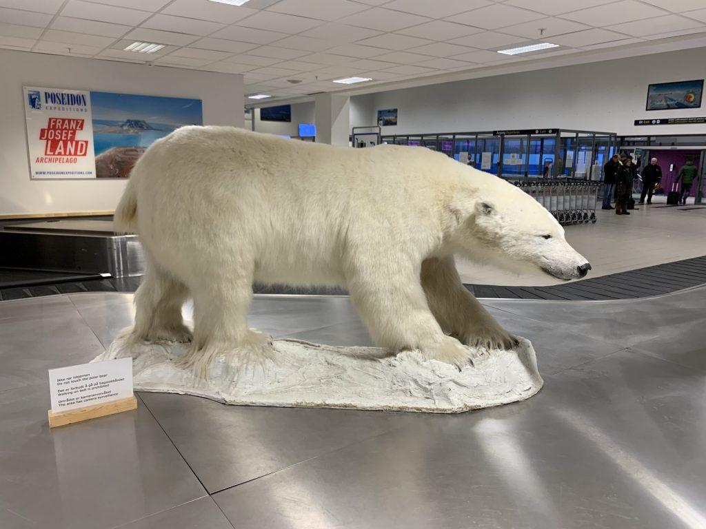 Von Oslo in die Arktis nach Spitzbergen